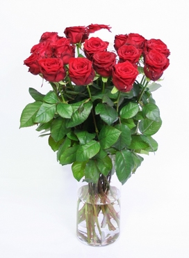 Bouquet red Roses with 1 white Rose big heads