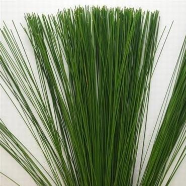 Bunch  Flexigrass 20 stems