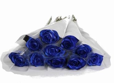 Roses bleu en housse frosted blanc