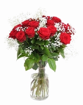 Bouquet of 20 red Roses big heads and Gypsophile