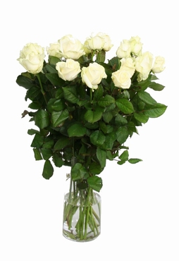 Bouquet cream white Roses with big heads 70 cm
