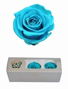 Geconserveerde Aquamarine Rozen in een cadeaubox