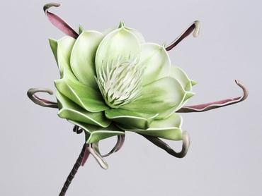 Foam flower green white Ø 20 cm