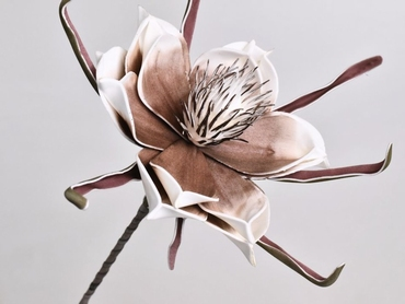 Foam flower white mocca Ø 20 cm