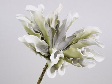Foam flower Dracena white grey Ø 24 cm