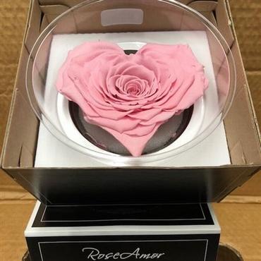 Geconserveerd roze Rozen hart in een cadeaubox