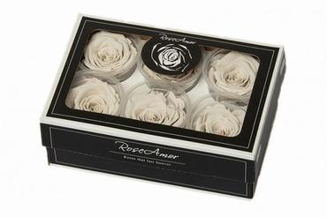 Geconserveerde witte Rozen in een cadeaubox