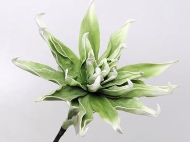 Foam flower green white Ø 35 cm