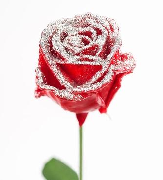 Roses longues à gros boutons ciré rouge paillettes argentée
