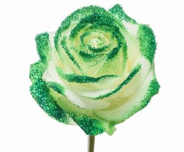 Roses à longue tiges gros boutons blanc et paillettes vertes
