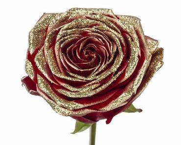 Roses longues tiges à gros boutons rouge et paillettes dorée