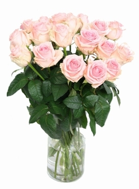 Bouquet light pink Roses long with big heads