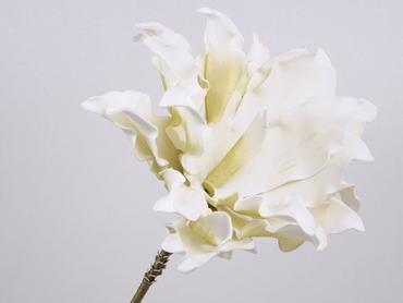 Foam flower Dracena white Ø 24 cm