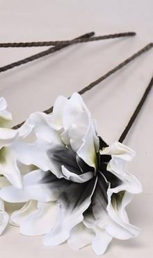 Foam flower Dracena white black Ø 24 cm