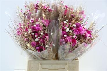 Bouquet séché Fantasia cerise