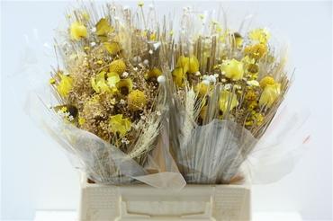 Bouquet séché Fantasia jaune