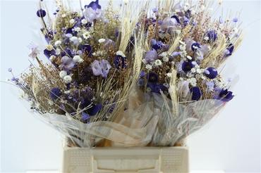 Bouquet séché Fantasia milka