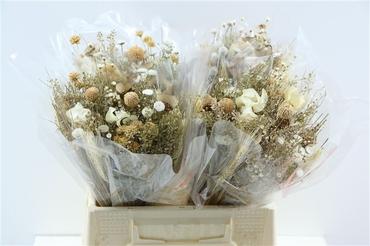 Bouquet séché Fantasia naturel
