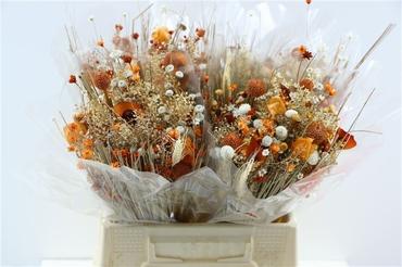 Bouquet séché Fantasia orange
