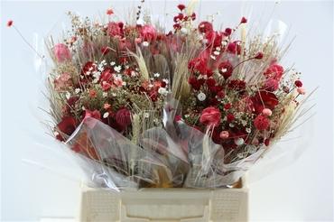 Bouquet séché Fantasia rouge