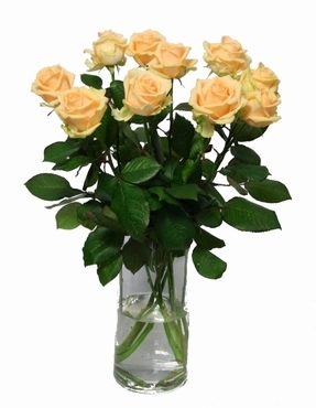 Bouquet peach Avalanche Roses big heads