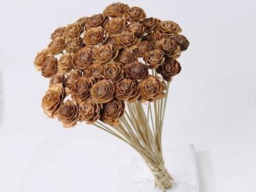 Cedar Rose sur tige