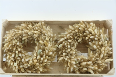 Droogbloemen krans 30 cm van Lagurus, Phalaris en Tarwe