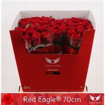 Bouquet of red Roses with big heads Red Eagle long