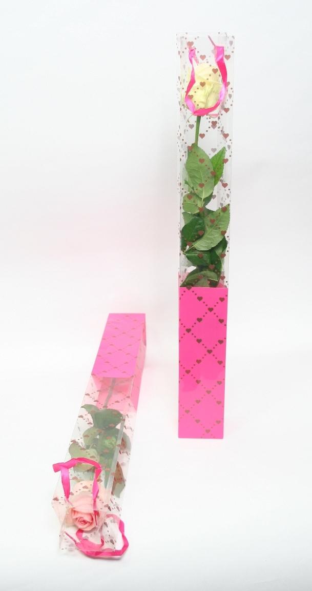 1 Rose en tube à partir de 1 Rose jusqu'à 250 Roses