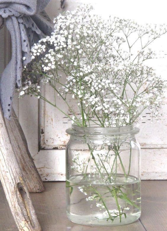 25 Gypsophila white