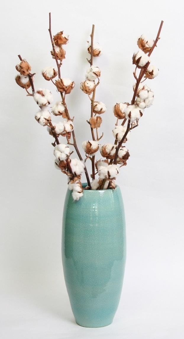 5 branches de Coton en vase turqoise