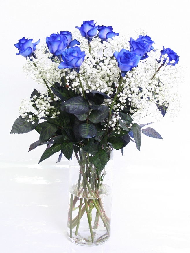 Bouquet de 10 Roses bleues avec Gypsophile