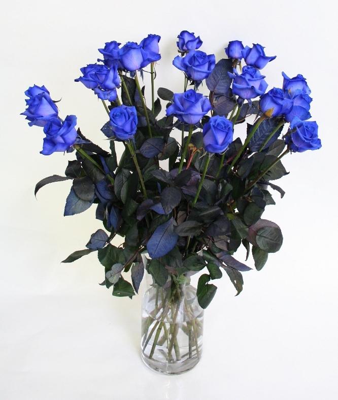 Bouquet 10 blue Roses longeur moyenne