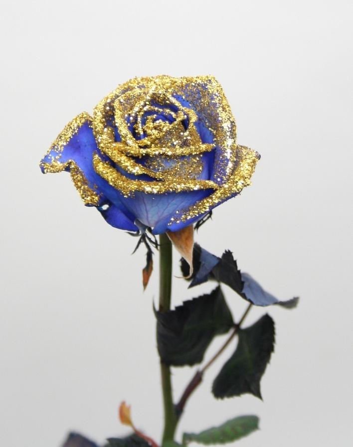 Bouquet 10 blue Roses longus avec des paillettes dorées