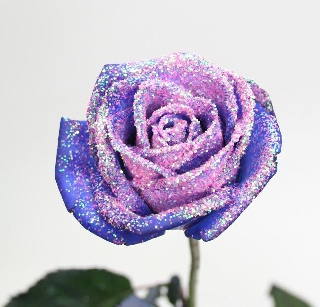 Bouquet 10 blue Roses longus avec des paillettes roses