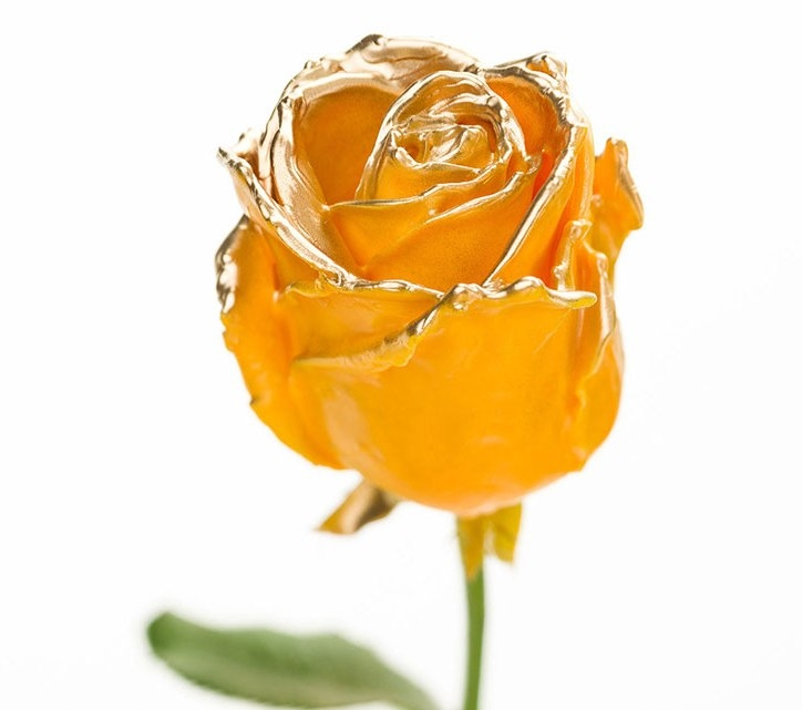 Bouquet of long ochre waxed Roses big flowers gold blush
