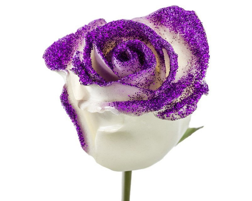 Bouquet of white waxed Roses big flowers and purple sparkles