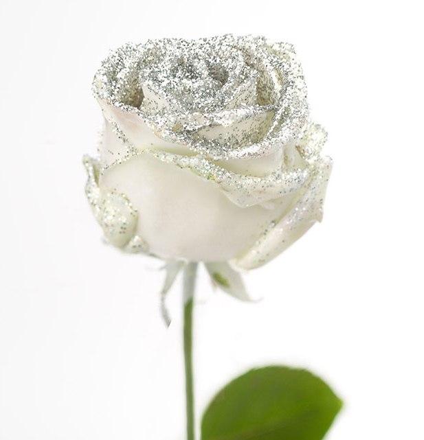 Roses longues à gros boutons ciré blanc paillettes argentée