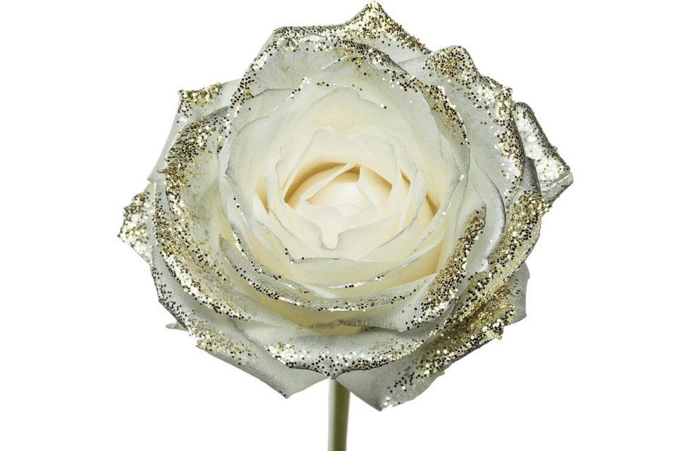 Roses longues tiges à gros boutons blanc paillettes nacre