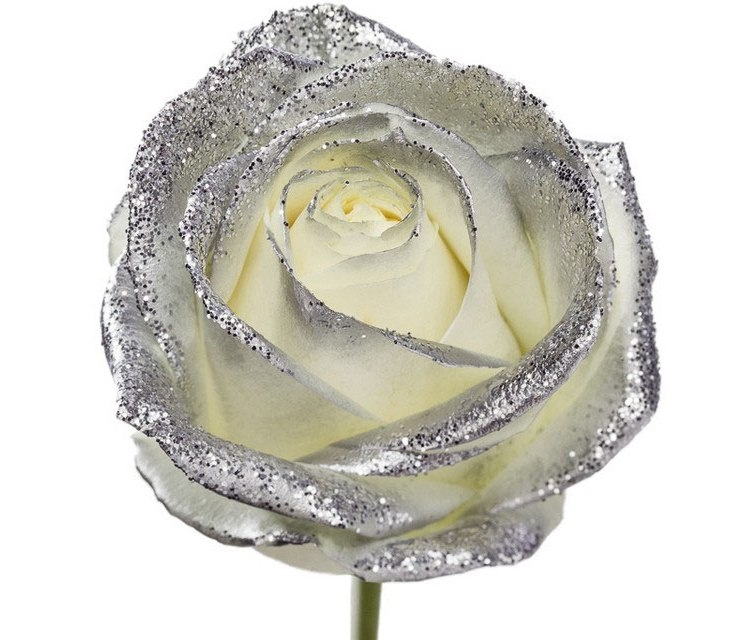 Bouquet of long white Roses big flowers and silver sparkles