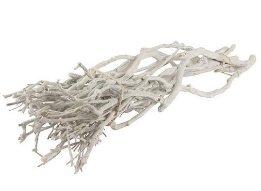 Whitewood badigeon 500 gramme